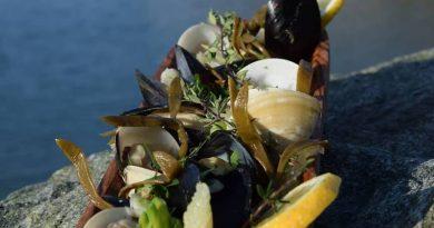 Tinos farm to table – Από το μποστάνι στο πιάτο σας!